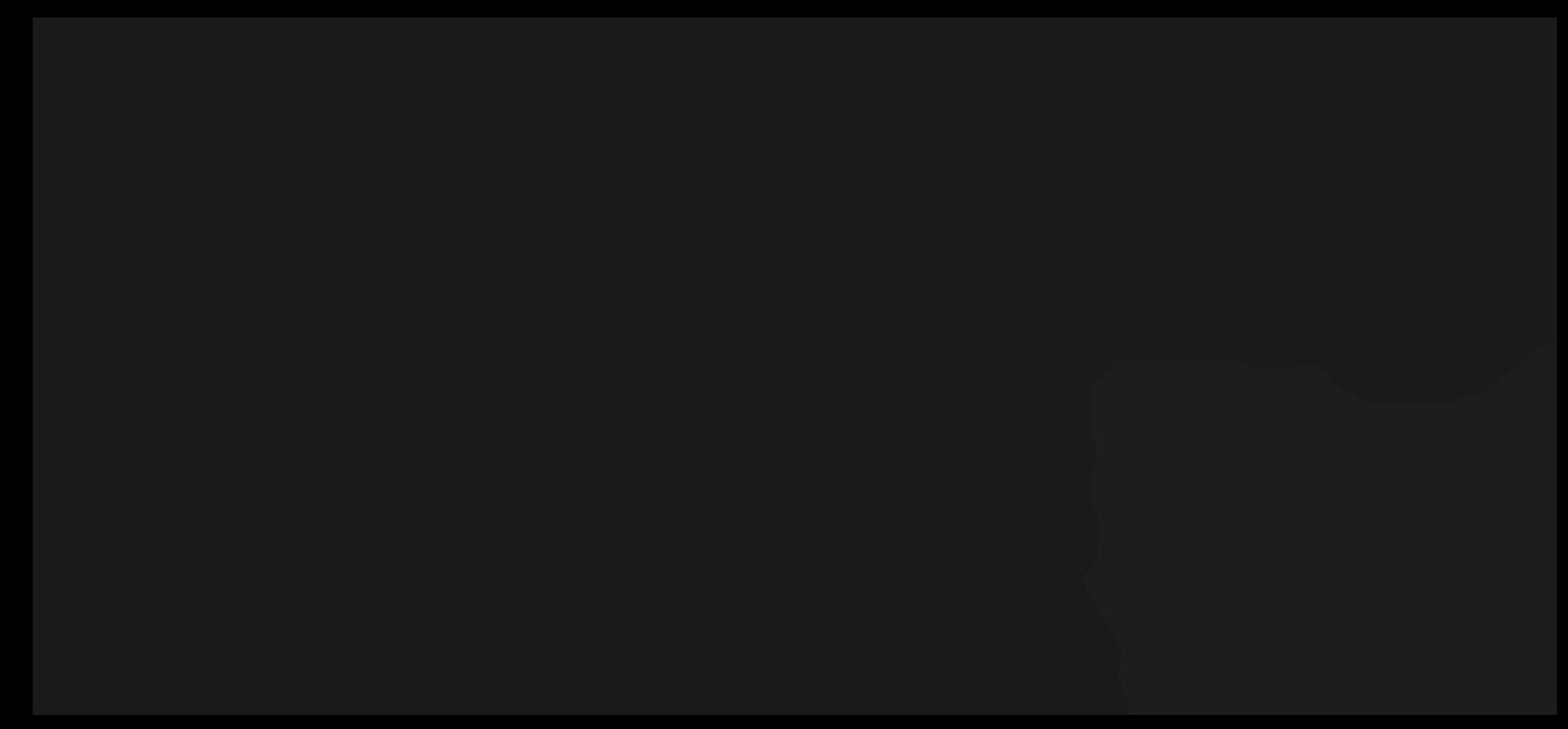 Loo, der Waschbär in verschiedenen Posen