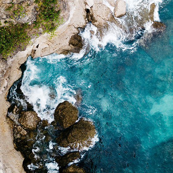 News Truffle Bay – Die geschütze Bucht für Markenentwicklungen