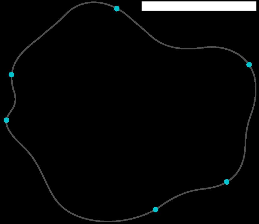 Truffle Bay Grafik Partnernetzwerk